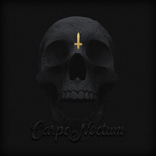 Carpe Noctum by Omega
