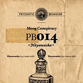 Hayawaska by Moog Conspiracy