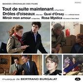 Drôles d'oiseaux et autres musiques de films by Bertrand Burgalat