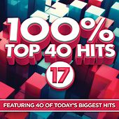 100% Top 40 Hits 17 by Various Artists