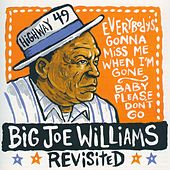 Big Joe Williams Revisited by Big Joe Williams