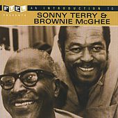 An Introduction To Sonny Terry and Brownie McGhee by Various Artists