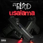 Usalama by Lil Blood
