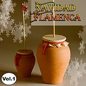 Play & Download Navidad Flamenca, Vol. 1 by Various Artists | Napster