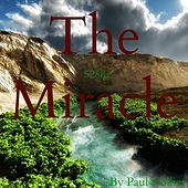 The Miracle by Paul Collier