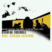 Here: Chicago Sessions by Boxhead Ensemble