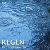Regen - Regengeräusche by Regen Macher