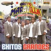 Exitos Grandes by Grupo Maravilla