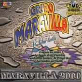 Maravilla 2000 by Grupo Maravilla