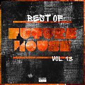 Best of Future House, Vol. 13 by Various Artists