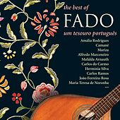 Play & Download The Best Of  Fado - Um Tesouro Português Vol 1 by Various Artists | Napster