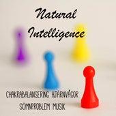 Natural Intelligence - Chakrabalansering Sömnproblem Hjärnvågor Musik med New Age Instrumental Lugnande Ljud by Radio Meditation Music