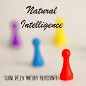 Natural Intelligence - Suoni della Natura Rilassanti per Aumentare Concentrazione Meditazione Quotidiana Prano Terapia by Radio Meditation Music