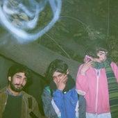 Lomas de Zamora by 1994