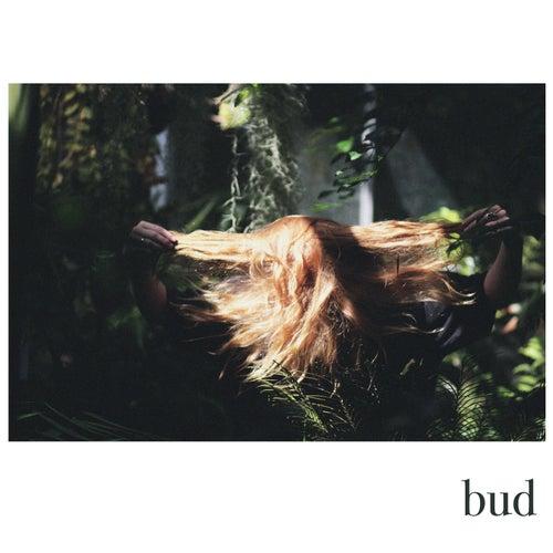 Bud by Fenne Lily