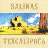 Texcalipoca by Salinas