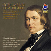 Play & Download Schumann: Chamber Works by Various Artists | Napster