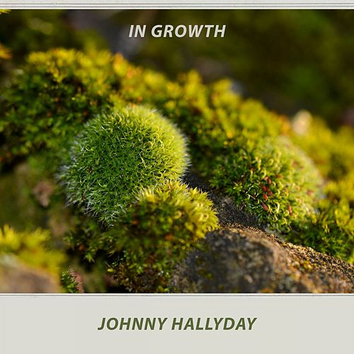 In Growth de Johnny Hallyday