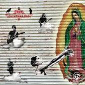 Quintana Roo by Rh+