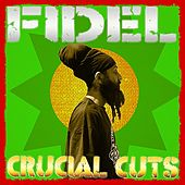 Crucial Cuts by Fidel Nadal