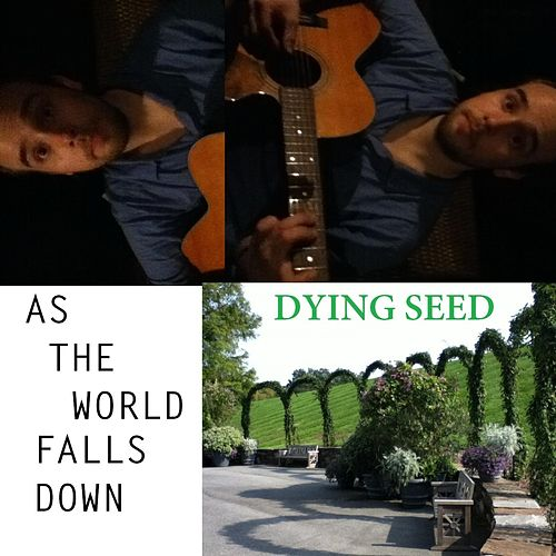 As the World Falls Down by Dying Seed