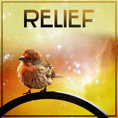 Play & Download Relief – Nature Sounds for Relaxation, Deep Sleep, Stress Free, Healing Water, Relaxing Waves, Sounds of Sea, Rest, Peaceful Mind by Relaxation - Ambient | Napster