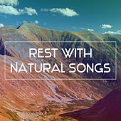 Play & Download Rest with Natural Songs – Calming Sounds, Relaxing Music, Rest with Sounds of Nature by Nature Sounds (1) | Napster