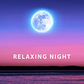 Play & Download Relaxing Night – Peaceful Sounds of Nature, Relaxing Music, Deep Sleep, Helpful for Falling Asleep by Best Relaxation Music | Napster