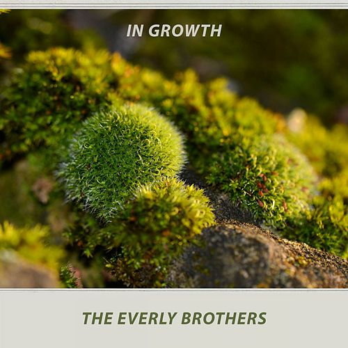 In Growth von The Everly Brothers