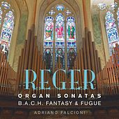Reger: Organ Music by Adriano Falcioni
