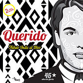 Play & Download Querido Tributo Indie al Divo by Various Artists | Napster