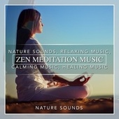 Play & Download Zen Meditation Music, Nature Sounds, Relaxing Music, Calming Music, Healing Music by Nature Sounds (1) | Napster