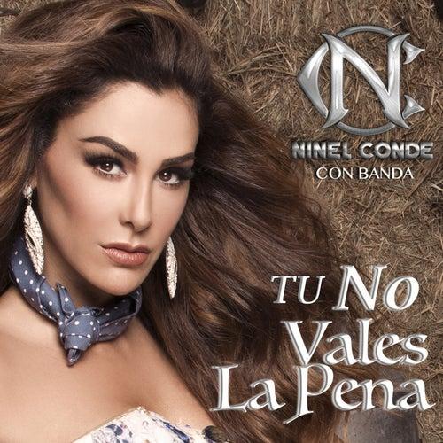 Tu No Vales la Pena by Ninel Conde