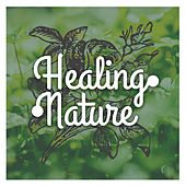 Play & Download Healing Nature – Peaceful Music for Spa, Wellness, Deep Massage, Restful Sleep, Relaxing Waves, Sea Sounds, Stress Free, Asian Music by Deep Sleep Relaxation | Napster