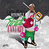 Final Fantasy by Young L