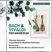 Play & Download Bach & Vivaldi for Mandolin by Various Artists | Napster