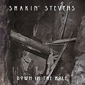 Down in the Hole by Shakin' Stevens