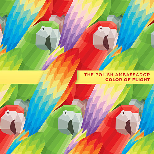 Play & Download Color of Flight by The Polish Ambassador | Napster
