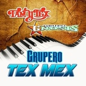 Grupero Tex Mex by Various Artists