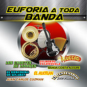 Euforia Toda Banda by Various Artists