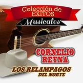 Coleccion de Exitos Musicales by Various Artists