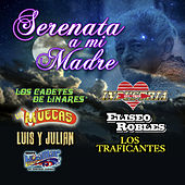 Serenata A Mi Madre by Various Artists