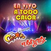 En Vivo A Todo Calor by Various Artists