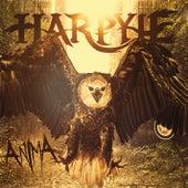 Anima von Harpyie