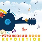 Psychedelic Rock Revolution by Various Artists