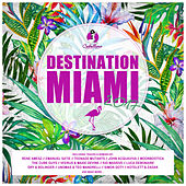 Destination: Miami 2017 by Various Artists