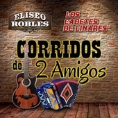 Play & Download Corridos de Dos Amigos by Various Artists | Napster