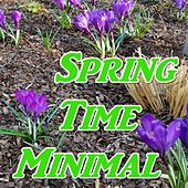 Spring Time Minimal (Best of 2017) by Various Artists