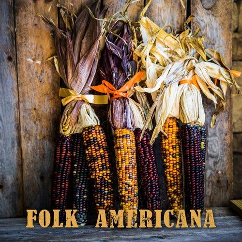 Folk Americana by Various Artists
