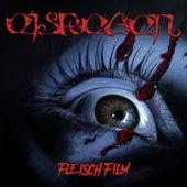 Fleischfilm by Eisregen
